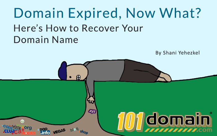 Domain Expired, Now What? Here's How to Recover Your Domain Name