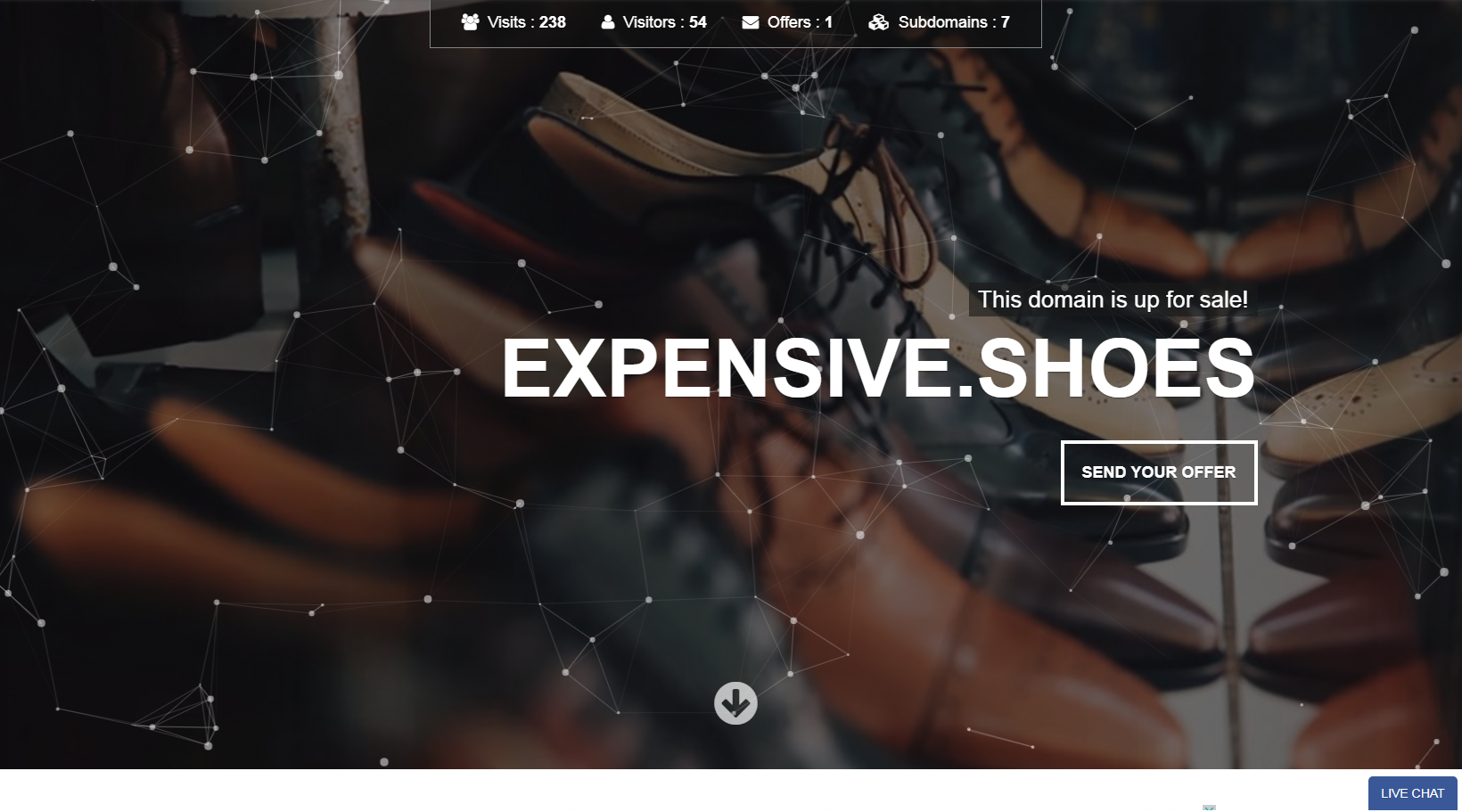 expensive.shoes landing page