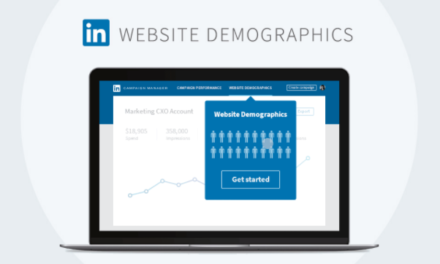 LinkedIn Website Demographics [Coming Soon]