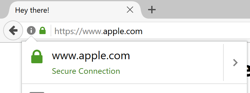 Domain Spoofing Apple.com
