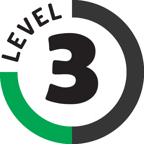 level 3 business pro shared hosting