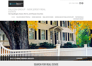 website for falcongroup .homes domain