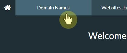 Domain Names tab