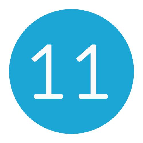 11 DNS records