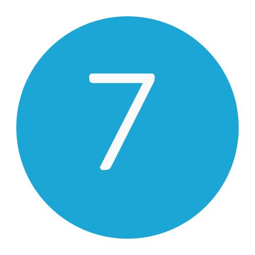7 DNS records