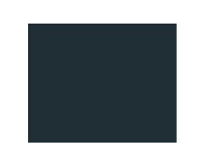 Safe User Data Icon