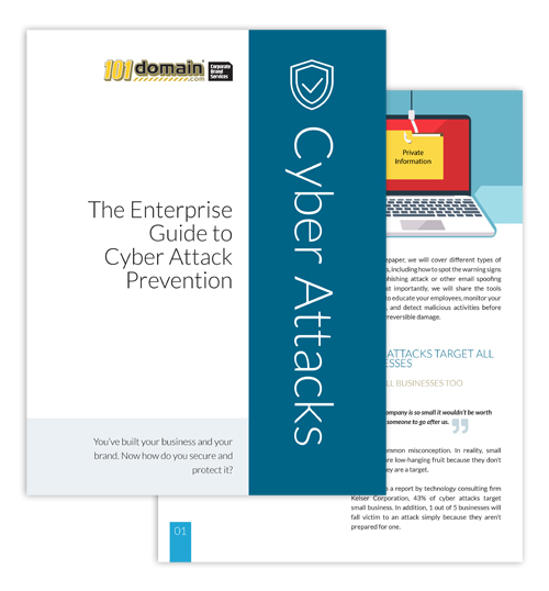 The Enterprise Guide to Cyber Attack Prevention